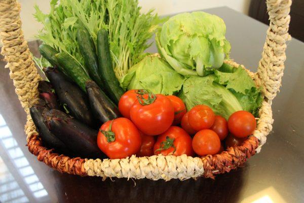 しゅん野菜