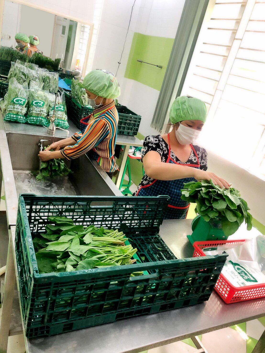 しゅん 安全野菜