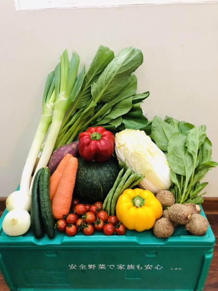 しゅん野菜ボックス2